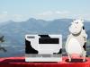 Multimedia Cow auf dem Pfänder, Austria